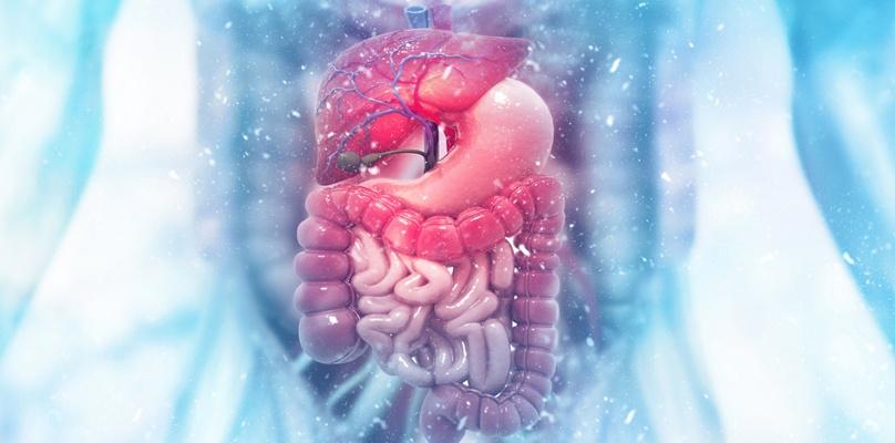 Magen und Darmkrankheiten